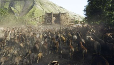 Noah Animals on Ark