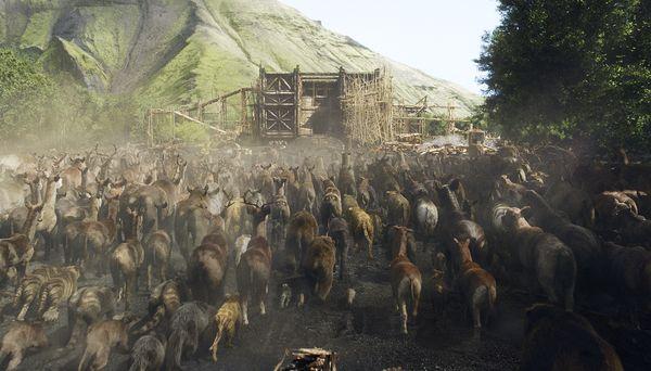 Noah Animals on Ark